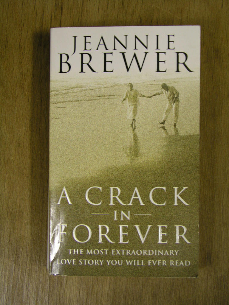 Jeannie Brewer - A Crack in Forever